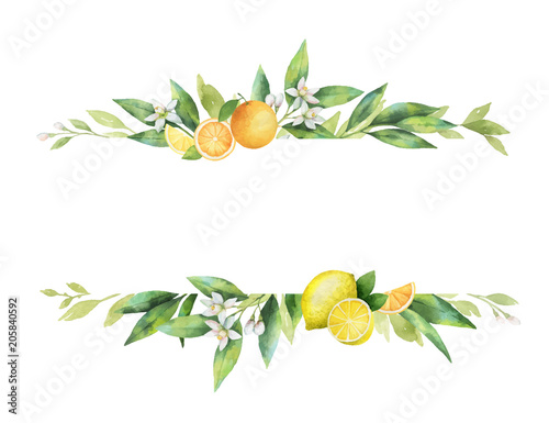 Watercolor vector banner of citrus fruits and leaves. Poster Mural XXL