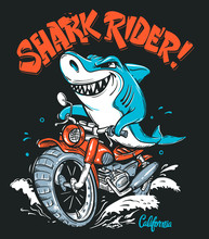 Shark Rider On Motorcycle Vector T-Shirt Design