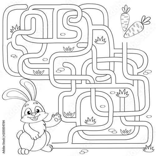 Help little bunny find path to carrot  Labyrinth  Maze game