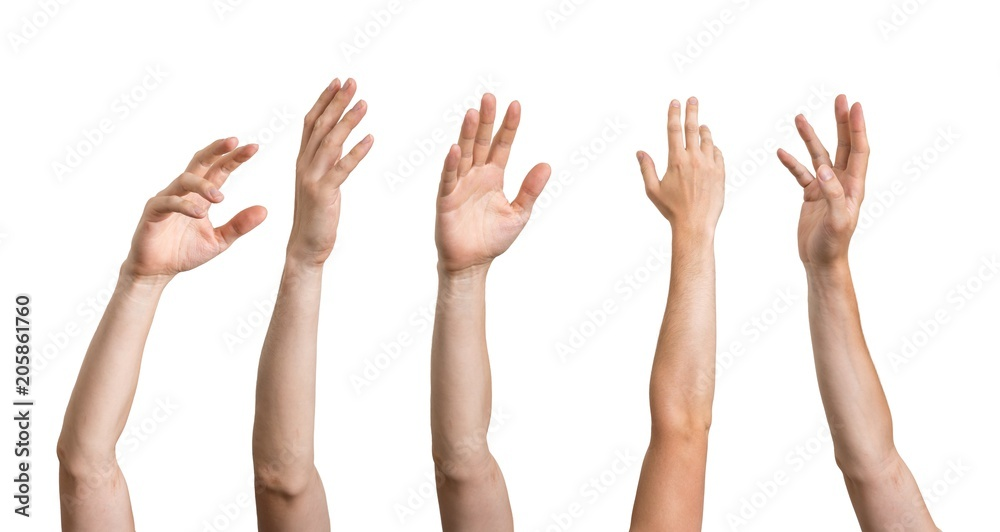 Fototapeta Many hands raised up. Isolated on white background.