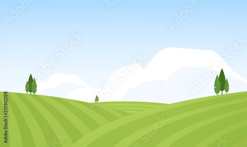Vector illustration: Flat Summer Rural landscape with fields