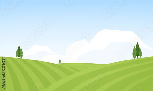 Vector illustration: Flat Summer Rural landscape with fields