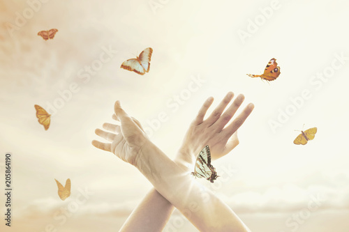 woman's hands dance in harmony with some butterflies in the middle of nature