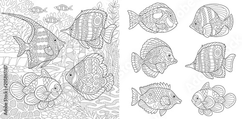 Underwater Ocean World Shoal Of Tropical Fishes Of Different