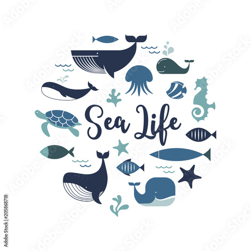 Fotografie, Tablou  Sea life, whales, dolphins icons and illustrations, poster design