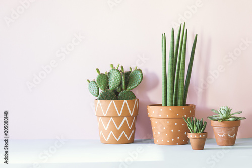 Foto The stylish interior filled a lot of plants in different hipster clay pots  with copy space