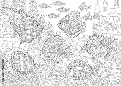 Underwater Ocean World Shoal Of Tropical Fishes Of Different Species Coloring Pages Adult Coloring Book Idea Stock Vector Adobe Stock