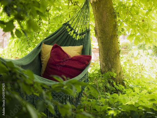 Photographie Hammock with two colourful cushions,  suburbian garden scene