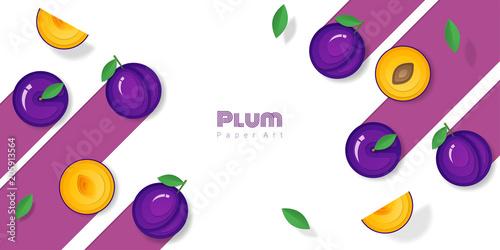 Fresh plum fruit background in paper art style , vector , illustration - 205913564
