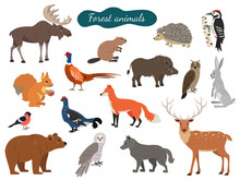 Set Of Forest Animals On White...