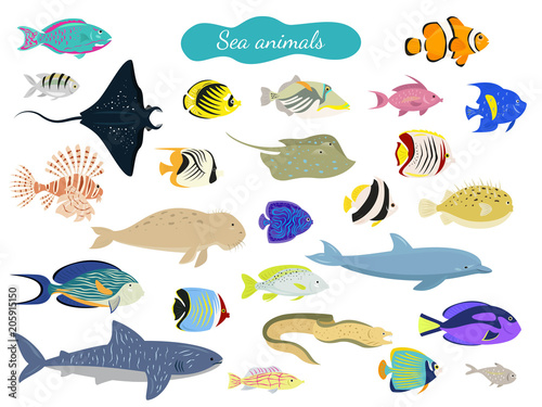 Photo  Set of cartoon sea animals on white background.