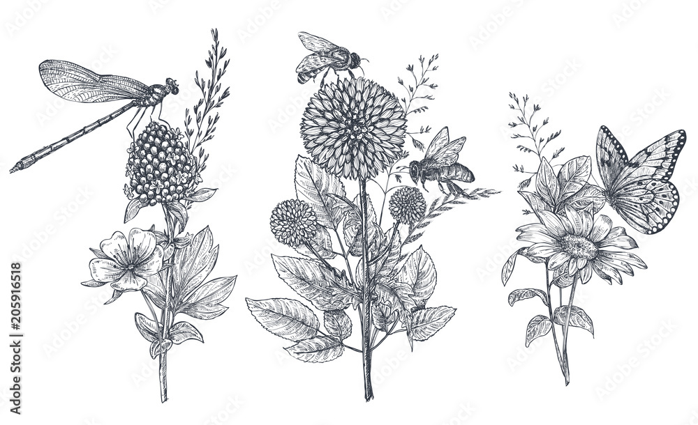 Fototapeta Set of three vector floral bouquets with black and white hand drawn herbs, wildflowers and insects