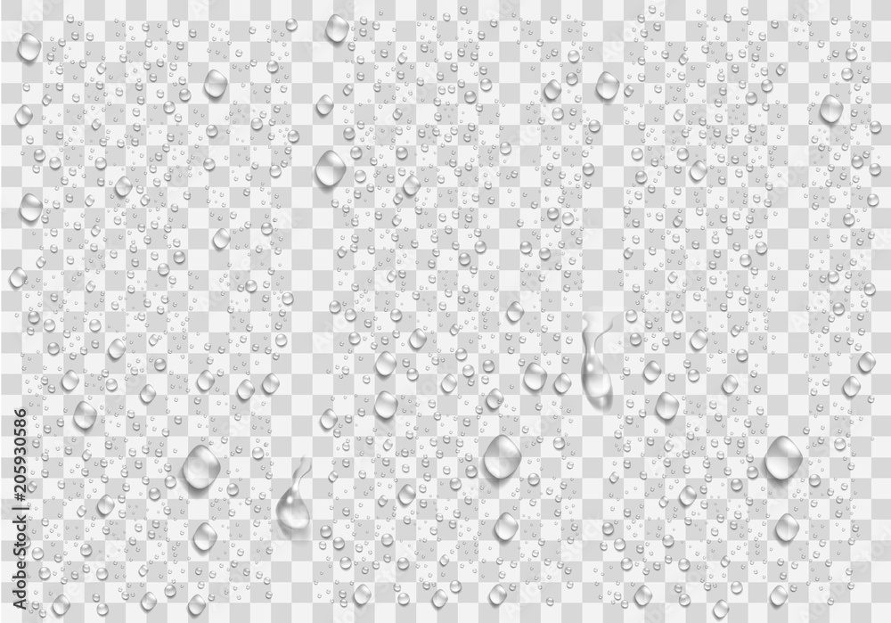Fototapety, obrazy: Realistic water droplets on the transparent window. Vector