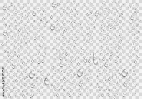 Realistic water droplets on the transparent window. Vector Fototapet