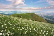 Mount Linzone, Orobie Alps, Lo...