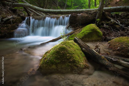 Fototapety, obrazy: Forest nature waterfall