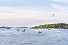 Sunset In Bar Harbor, Maine Vi...