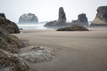Sea Stacks And Rock Formations On The Beach In Bandon, Oregon On A Foggy Morning