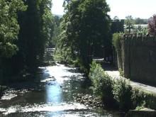 Tavistock River