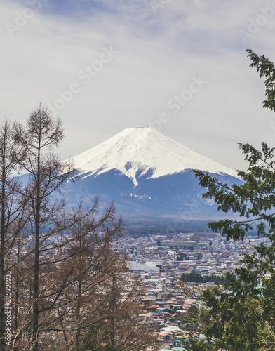 Magnifique vue sur le Mont Fuji au printemps depuis la Chureito Pagoda Canvas Print