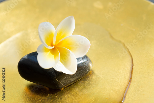 Wall Murals Plumeria A small but beautiful touch of zen. Pebbles and petals. tropical luxury asian spa in morninng sunlight.