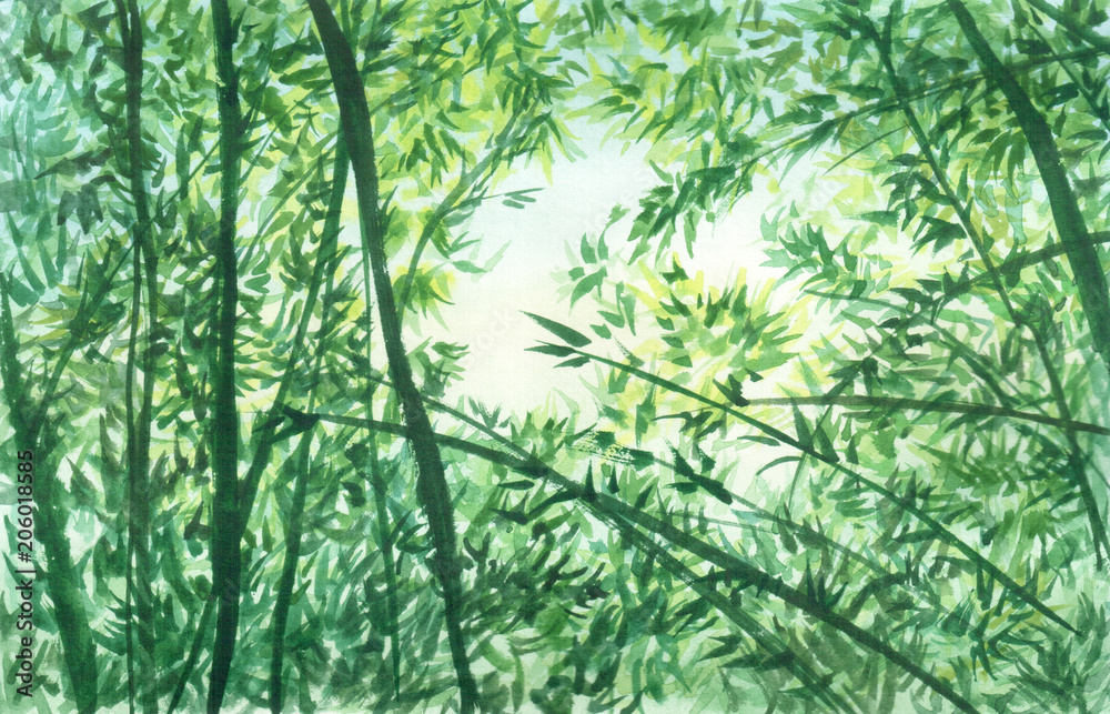 Ręcznie rysowane akwarela ilustracja gałęzi, liści, bambusa i niebo