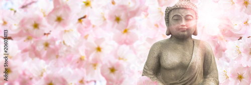 Buddha buddha sculpture in sunshine under the flowering cherry blossoms