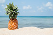 Summer tropical landscape with pineapple on the white sand beach on the background of blue sea and sky on a sunny day.