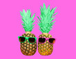 canvas print picture - Fashion two pineapple with sunglasses on pink background, colorful ananas photo