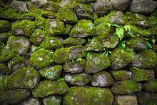 Massive Boulders Covered By The Green Moss And Climbing Plants. Natural Bricklaying. Geometric Ornament. Perfect Background For Different Styles Of Collages And Illustrations.