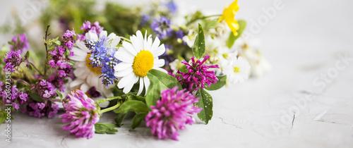 Fotografie, Obraz  Healing herbs