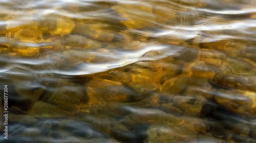 Fotografiet  Sunlit shallow golden lake waters.  Rocks lying below surface.