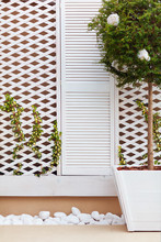 Wooden Trellis Facade Wall Wit...
