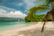 Mar verde del caribe