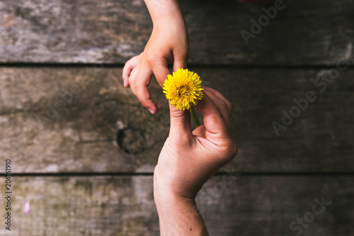 Photo Parent and child hands handing flowers