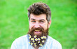 Leinwandbild Motiv Man with beard and mustache enjoy spring, green meadow background. Masculinity concept. Hipster on happy smiling face, green background, copy space. Guy with daisy or chamomile flowers in beard.
