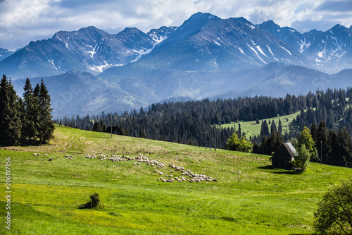 Photo  View of Tatra mountains in spring.