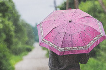Woman On The Road With A Pink Umbrella Under A Heavy Rain