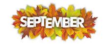 Autumn Foliage September Heade...