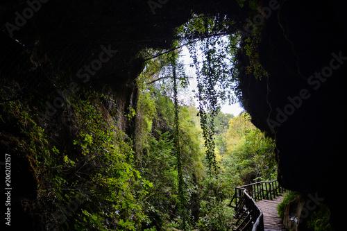 Fotobehang Weg in bos Pathway Wooden Footbridge