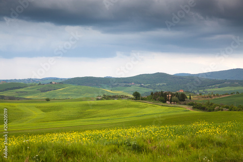Foto auf Gartenposter Hugel beautiful green summer landscape in Tuscany, Italy