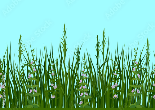 Foto op Canvas Lichtblauw Seamless Horizontal Background, Nature, Landscape with Fresh Green Grass, Leaves, Lilac Flowers and Blue Sky, Tile Pattern for Your Design. Vector