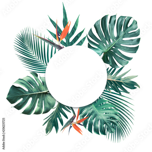 Tropical leaves with white copy space background.Nature and summer concepts Wall mural
