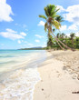Panorama of secluded beach of, Las Galeras, Dominican Republic