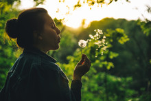 Woman Blowing Dandelion On Sunset. Copy Space