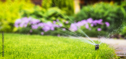 Fotografía  automatic sprinkler system watering the lawn on a background of