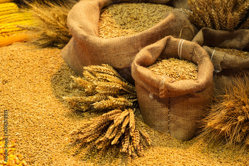 Assortment of grains and cereals in canvas bags with decorative seeds