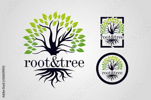 Carta da parati  Root & Tree Logo Template Set