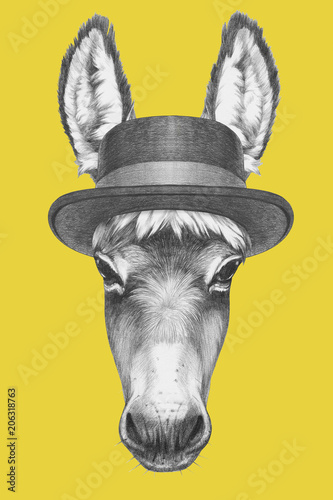 Portrait of Donkey with hat,  hand-drawn illustration Wallpaper Mural