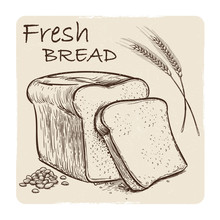 Grunge Sketch Of Fresh Bread, Grains And Wheat Ear